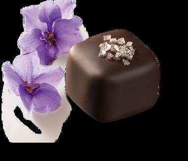 selection violette